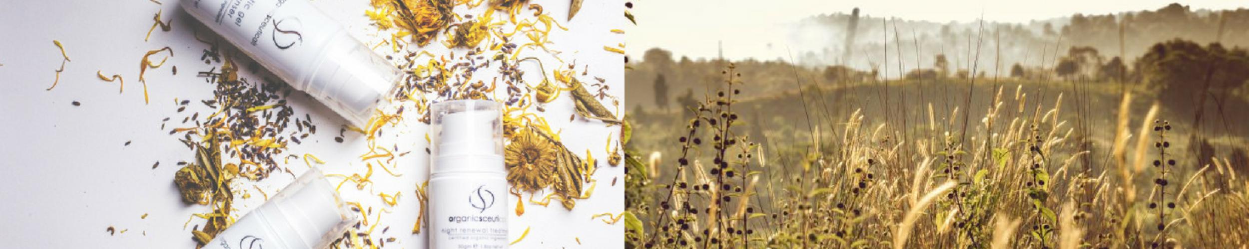 De puurheid van Organicspa